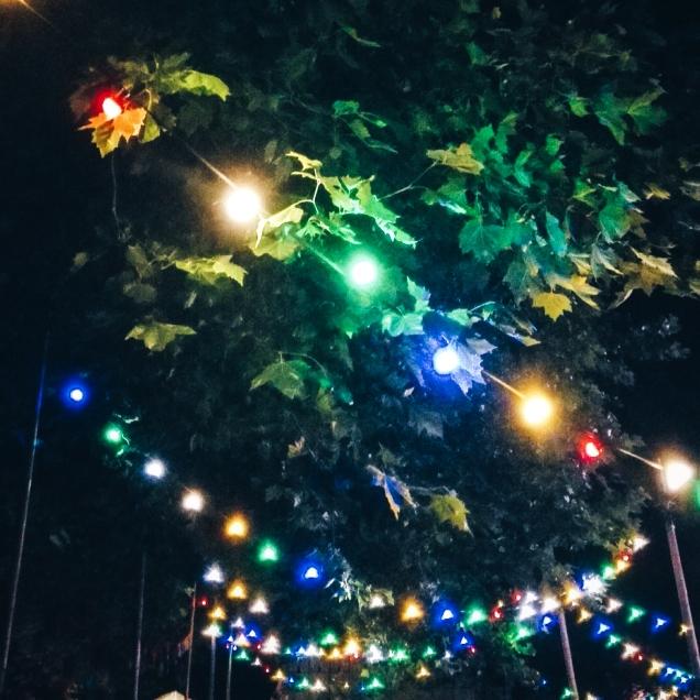 Festival (1 & 2)-21